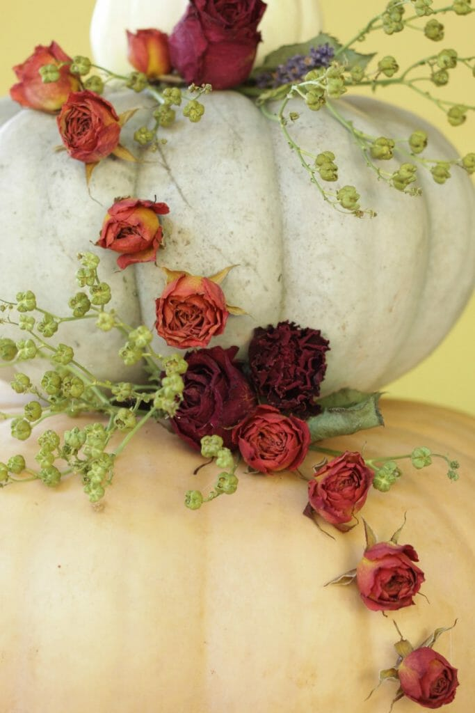 Cascading dried roses on Pumpkin Fall Centerpiece