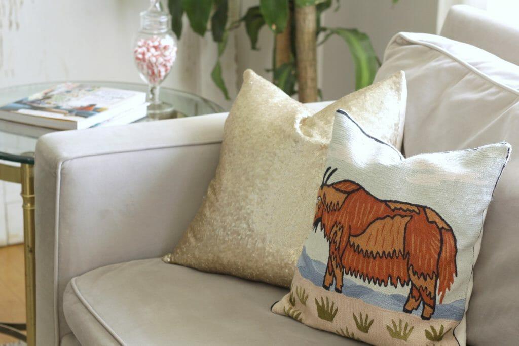 Buffalo Pillow and Gol Sequins Pillow