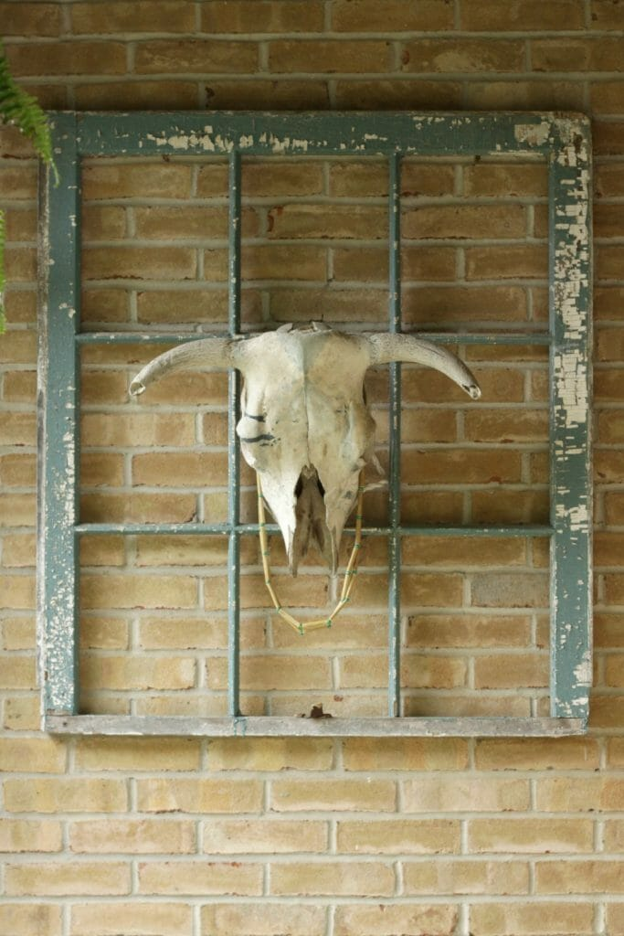 Vintage Window Frame and Bull Skull on Porch
