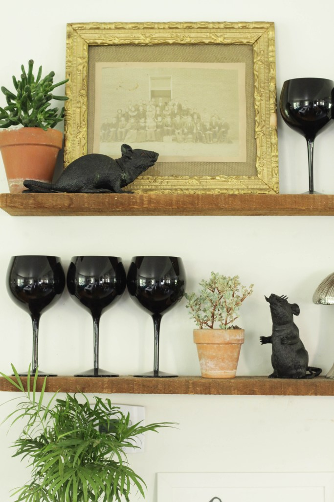 Black Rat Halloween Shelfie