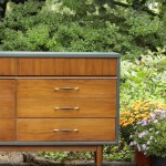 Furniture Makeover: Teal & Wood Midcentury Double Dresser (Y