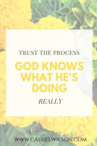 Trust the process. God knows what He is doing. | Cassie L. Wilson - learning to be the light