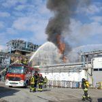 Bulgarograsso, Ecosfera in fiamme