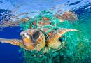 Mediterraneo plastic-free, l'Europa si muove