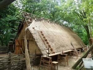 Ricostruzione capanna neolitica di Alba in fase di copertura - archeologia sperimentale - capanne neolitiche