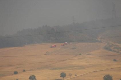 feux forêt 14