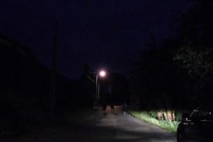 fete-des-voisins-a-rochebrune-2018 (9)