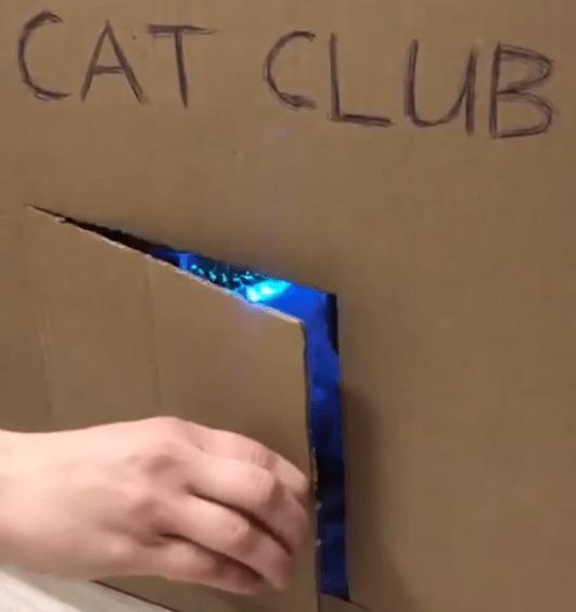 ネコ倶楽部の入り口