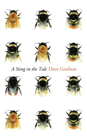 A Sting in the Tale by Dave Goulson; design by James Paul Jones; illustration Louise Bird (Jonathan Cape / June 2013)