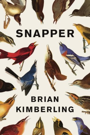 Snapper by Brian Kimberling; design by Jason Booher (Pantheon / April 2013)