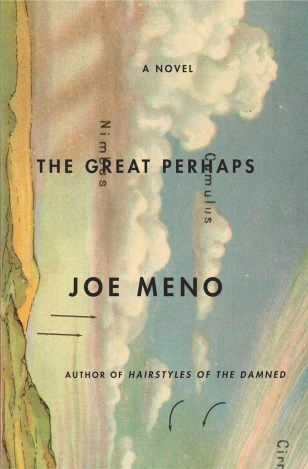 The Great Perhaps by Joe Meno; unused design by John Gall