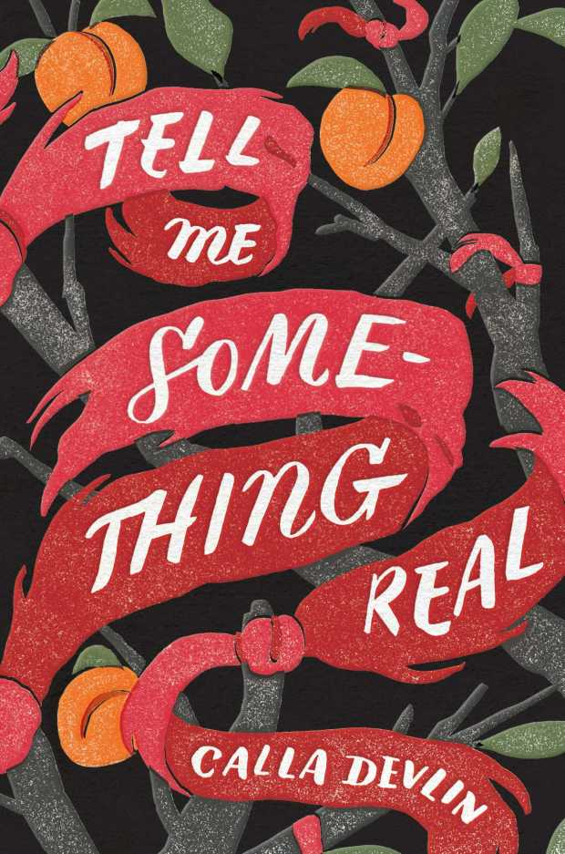 tell-me-something-real-cover-art-jill-de-haan