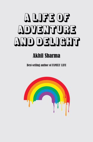 A Life of Adventure and Delight by Akhil Sharma; design Peter Mendelsund (W.W. Norton / July 2017)