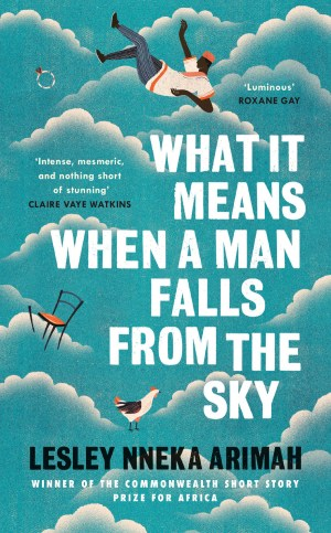 What it Means when a Man Falls from the Sky by Lesley Nneka Arimah; design Yeti Lambregts; illustration: Willian Santiago (Tinder Press / August 2017)