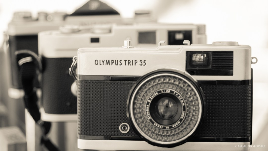 Olympus Trip 35 003
