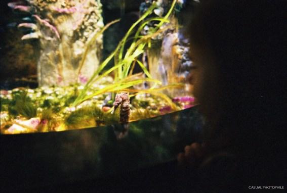 Natura 1600 G2 28mm Aquarium (8 of 13)