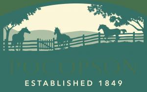 pocopson township logo