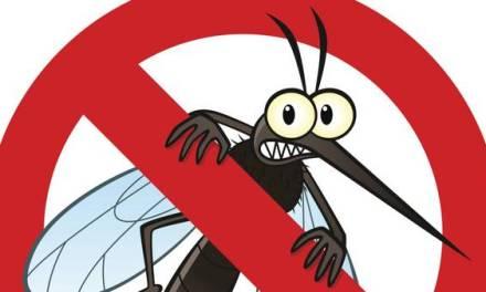 Gánale la batalla a los mosquitos.