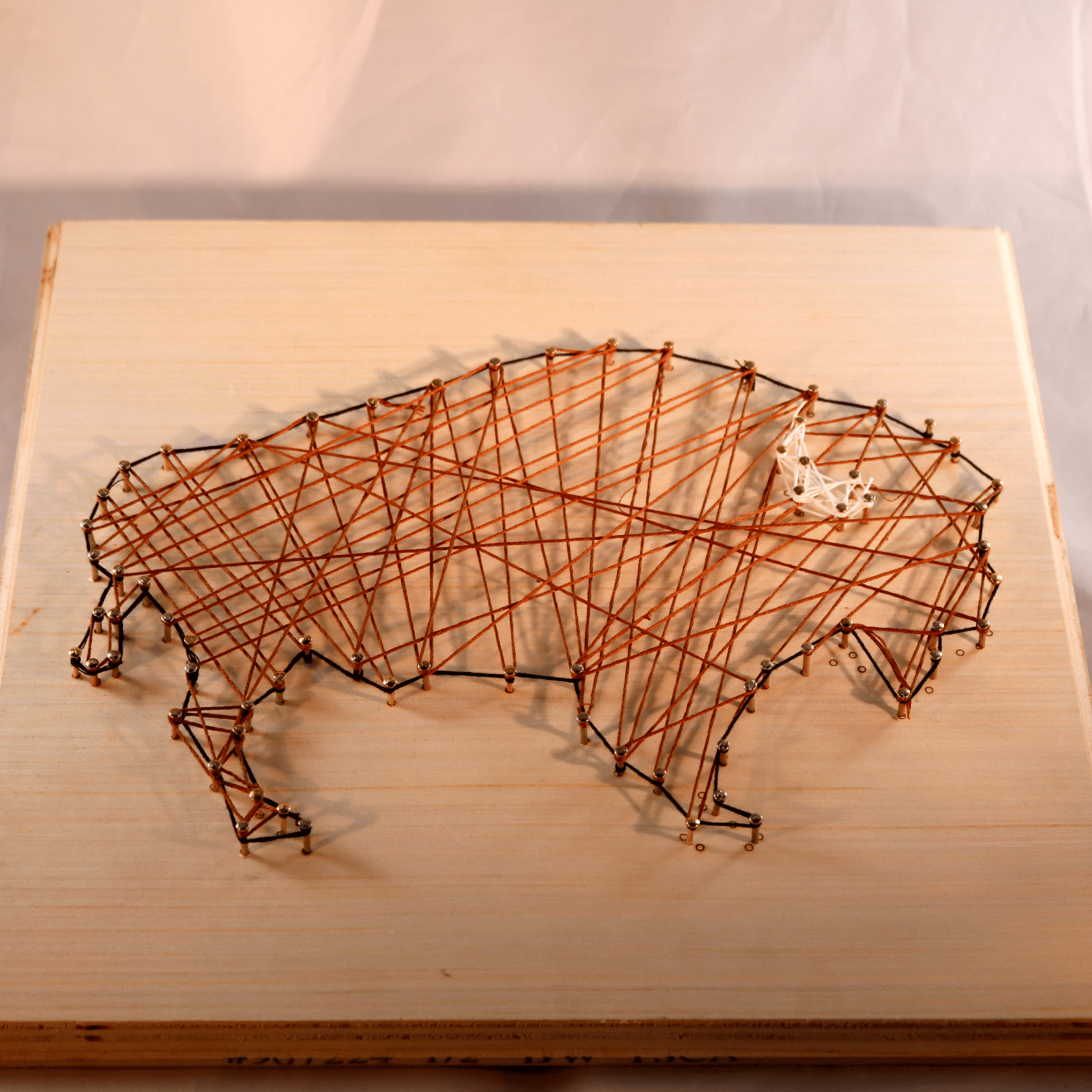 Buffalo String Art Kit