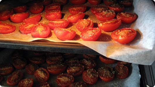 tomater.jpg