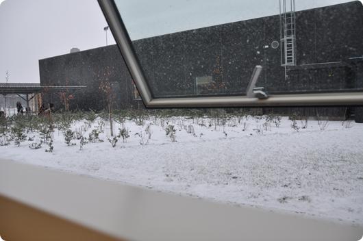 det-sner