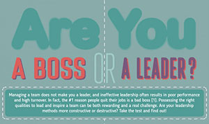 Are You A Boss or A Leader Artwork