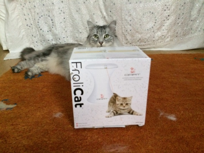 Review Of Frolicat 174 By Petsafe 174 Cat Teaser Toys With Zaza
