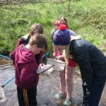 """Students and teacher from Kilfane National School taking part in """"StreamScapes Loobagh"""""""