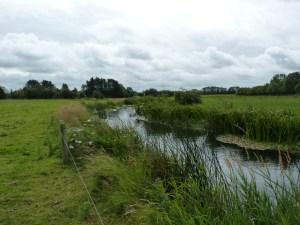 er Drish, Upper Suir catchment. Fencing the riparian margin (Photo E. Quinlan)