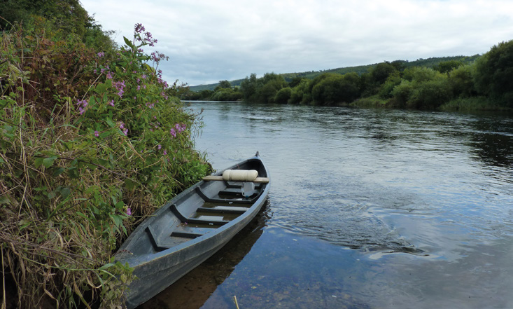 The Suir near Carrick-On-Suir before it flows out into the estuary Photo: Emma Quinlan