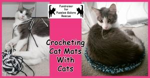 Crocheting Cat Mats