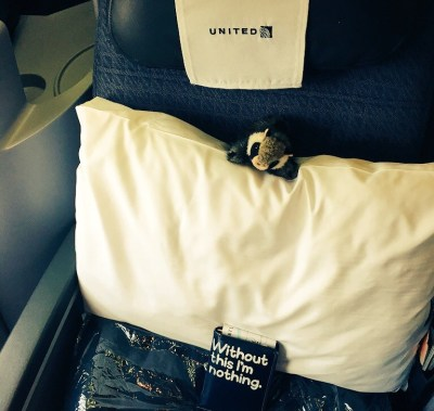 """Tiny Raccon perches on a pillow on a business class airline seat. Below sits a passport, in a case that says """"without this I'm nothing"""""""