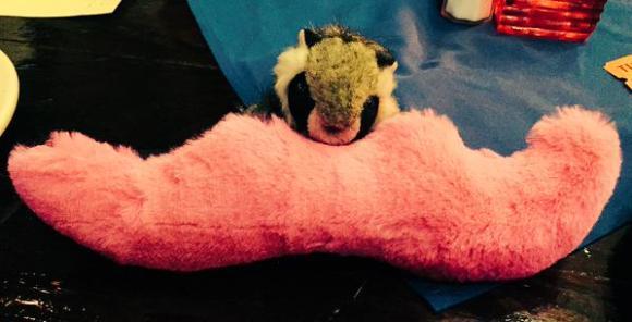 tiny_raccoon_moustache