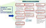 PuntoEdu Indire: Formazione online Neoassunti 2008 (parte terza)