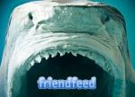 Friendfeed e pietre in faccia…