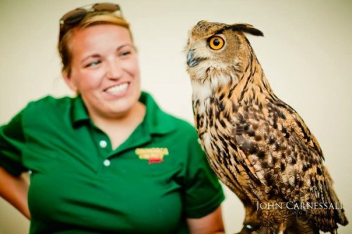 Syracuse Zoo - Eagon
