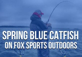 Spring Blue Catfish Chad Ferguson Fox Sports Outdoors