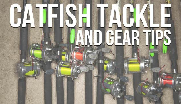 Catfish Tackle and Gear Tips