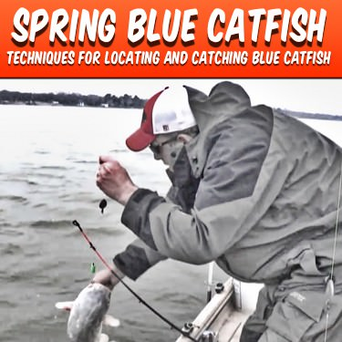 Spring Blue Catfish Techniques Catfish Edge