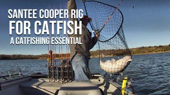 Santee Cooper Rig For Catfish