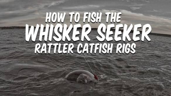 How To Fish Whisker Seeker Rattler Catfish Rigs