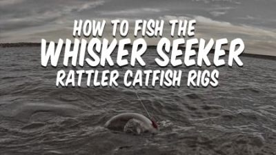 How To Fish Whisker Seeker Catfish Rigs