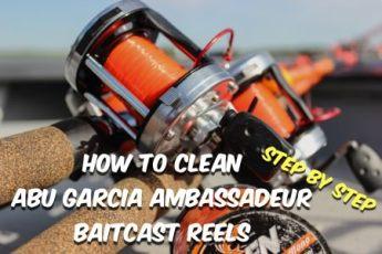 How To Clean Abu Garcia Ambassadeur Reels