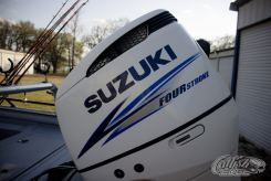 SeaArk ProCat 240 Outboard Motor
