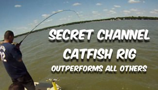 Secret Catfish Rig