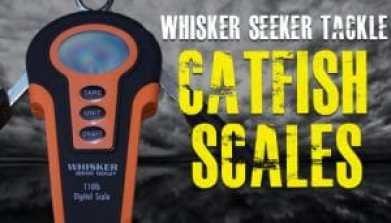 Whisker Seeker Tackle Digital Catfish Scales