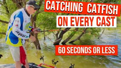 catch catfish 60 seconds or less