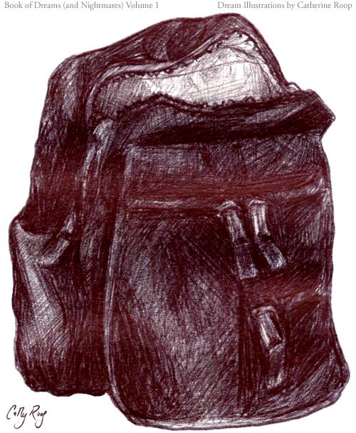 Backpack of Backpacks