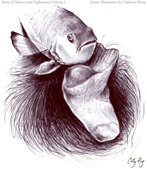 Fish and Sock