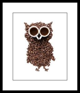 360_FRAMECoffee bean owl with espresso eyes_